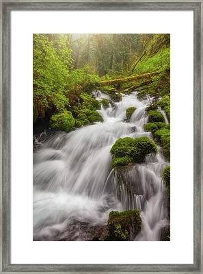 Cascade Dreaming Framed Print by Darren White