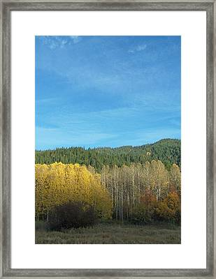 Cascade Fall Framed Print by Gene Ritchhart