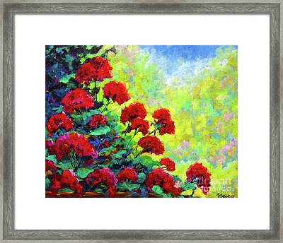 Cascade Of Geraniums Framed Print by Richard T Pranke