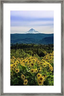 Cascade Spring Framed Print