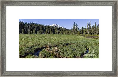 Cascades Meadow Framed Print by Twenty Two North Photography