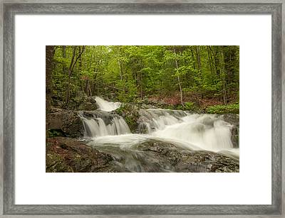 Cascades On The Brooks Falls Trail Framed Print