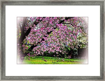 Cascading Dogwood Copyright Mary Lee Parker 17, Framed Print