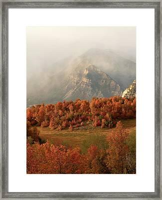 Cascading Fall Framed Print