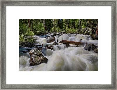 Cascading Stream Framed Print by James BO Insogna
