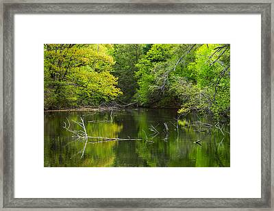 Case Mountain In The Spring Framed Print by Karol Livote