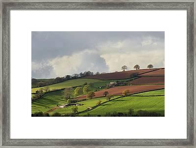 Caseberry Downs In Devon Framed Print by Pete Hemington