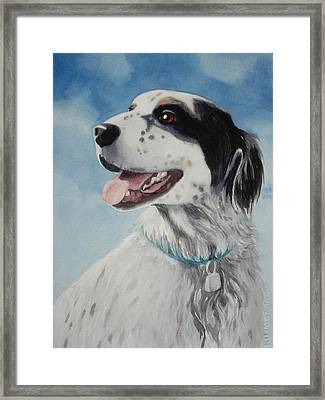 Casey Framed Print by Marilyn Jacobson