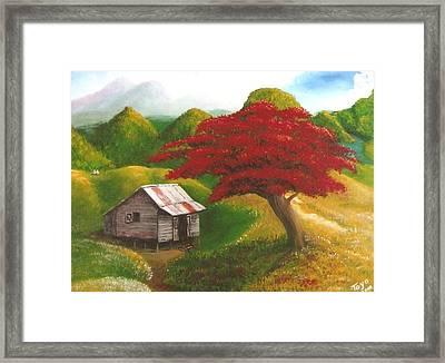 Casita Feliz Framed Print by Toyo Perez