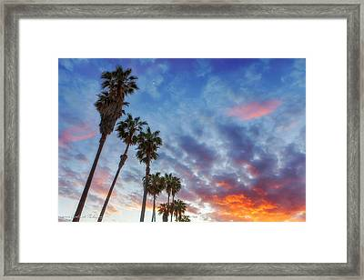 Framed Print featuring the photograph Casitas Palms by John A Rodriguez
