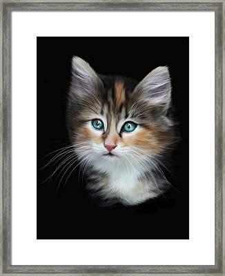 Cassiopeia  Framed Print by Julie L Hoddinott