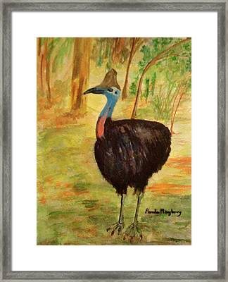 Cassowary Bird Framed Print