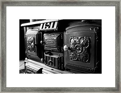 Framed Print featuring the photograph Cast Iron Character by Greg Fortier