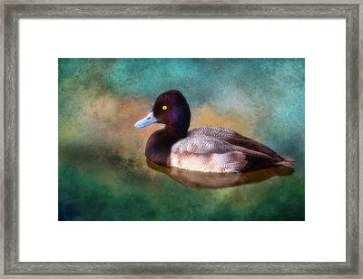 Cast Your Duck Upon The Water Framed Print by Joan Bertucci