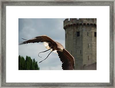 Castle And Eagle Framed Print by Irum Iftikhar