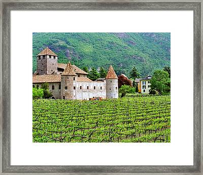 Castle And Vineyard In Italy Framed Print by Greg Matchick