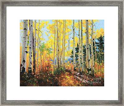 Castle Creek Road Framed Print