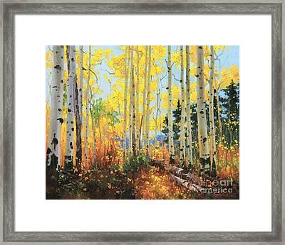 Castle Creek Road Framed Print by Gary Kim