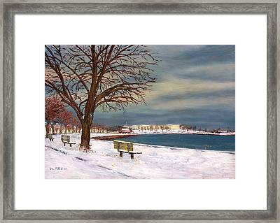Castle Island - Winter Framed Print