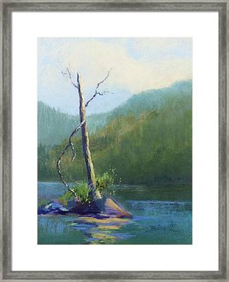 Castle Lake Snag Framed Print