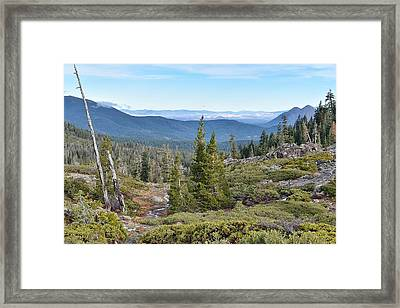 Castle Lake Trail Framed Print