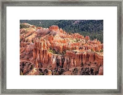 Castle Path Framed Print