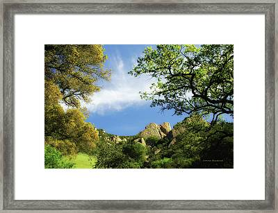Castle Rock Framed Print by Donna Blackhall