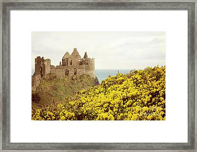 Framed Print featuring the photograph Castle Ruins And Yellow Wildflowers Along The Irish Coast by Juli Scalzi