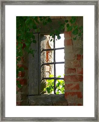 Castle Window Framed Print by Lori Seaman