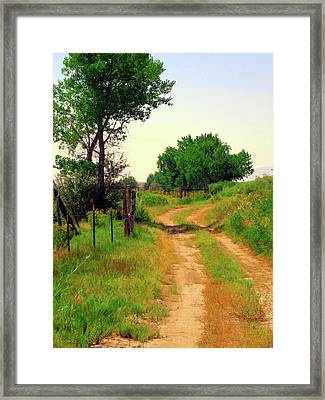 Castledale Farm Road Framed Print