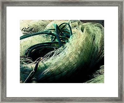 Castnet Ropes Framed Print