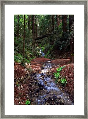 Castro Canyon In Big Sur Framed Print