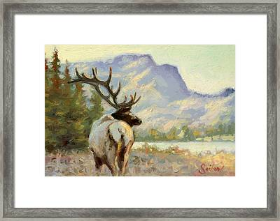 Casual Walk Elk Framed Print by Larry Seiler
