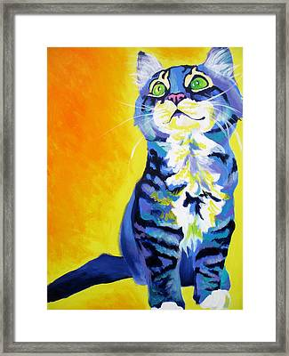 Cat - Here Kitty Kitty Framed Print