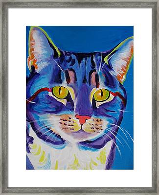 Cat - Lady Spirit Framed Print by Alicia VanNoy Call