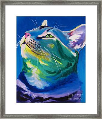 Cat - My Own Piece Of Sky Framed Print