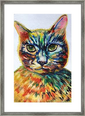 Cat A Tude Framed Print