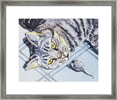 Cat Alert  Framed Print