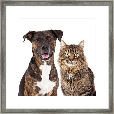 Cat And Dog Closeup Framed Print by Susan Schmitz