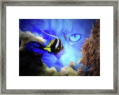 Cat And Fish Super Cute Funny Cat And Fish Tank Framed Print