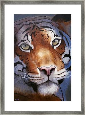 Cat And Mouse Framed Print