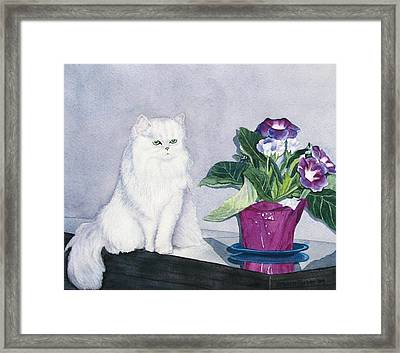 Cat And Potted Plant Framed Print by Sharon Farber