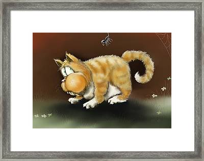 Cat And Spider Framed Print by Hank Nunes