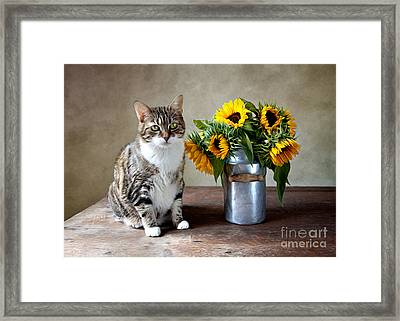 Cat And Sunflowers Framed Print