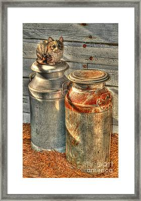 Cat And The Churns Framed Print