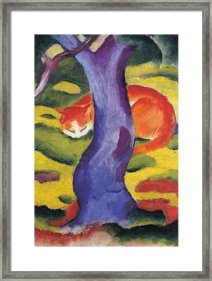 Cat Behind A Tree Framed Print by Franz Marc
