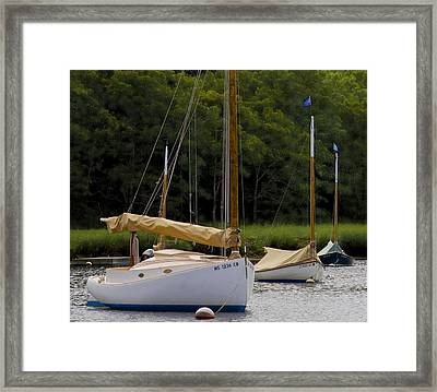 Framed Print featuring the photograph Cat Boats by Michael Friedman