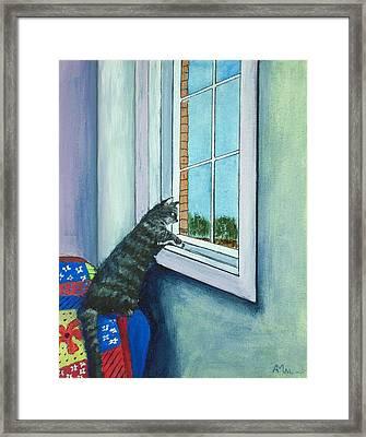 Cat By The Window Framed Print by Anastasiya Malakhova
