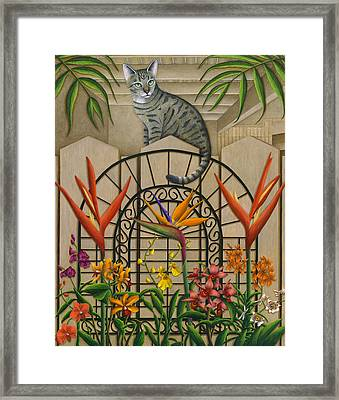 Cat Cheetah's Fence Framed Print by Carol Wilson