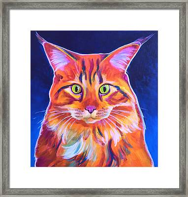 Cat - Cosmo Framed Print